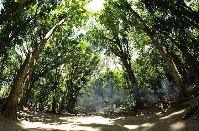 7 Hewan Penghuni Taman Wisata dan Cagar Alam Pangandaran