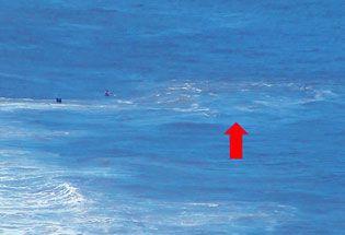 Tips Aman Berenang Di Pantai Pangandaran