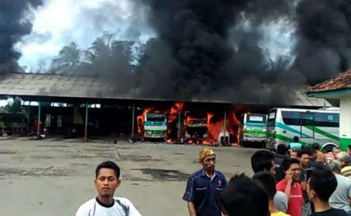 3 Bus Budiman Terbakar di Pangandaran, Kerugian Capai 5 Milyar Lebih