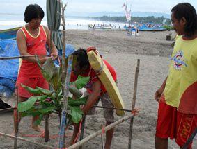 Awasi Wisatawan Sambil Rawat Pohon