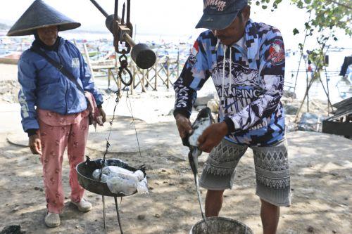Berburu Sotong di Pantai Pangandaran