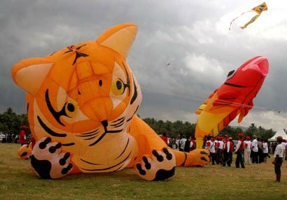 Bupati Ciamis Sesalkan tidak Digelarnya Pangandaran Kite Festival
