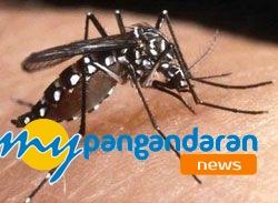 Ciamis Selatan Dilanda Wabah Chikungunya