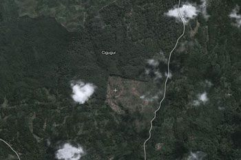Daya Dukung Fungsi Hutan Lindung di Kawasan Cigugur Semakin Berkurang