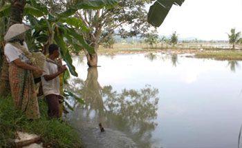 Kawasan Banjir Ciamis Mulai Rawan Air Bersih