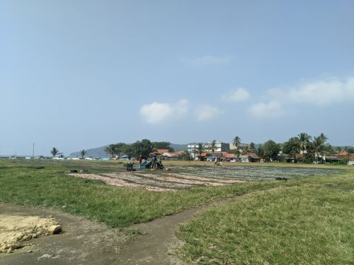 Lapang Katapang Doyong Pangandaran Akan Dijadikan Terminal Wisata