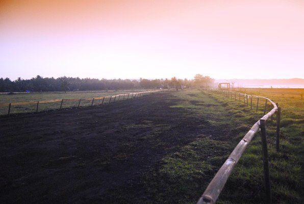 Lapang Ketapang Doyong Disulap Jadi Pacuan Kuda