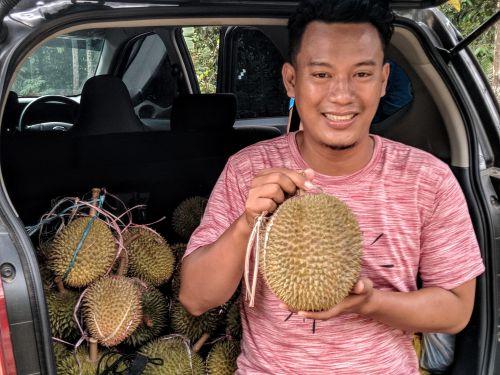 Menikmati Manis dan Legitnya Durian Asli Pangandaran