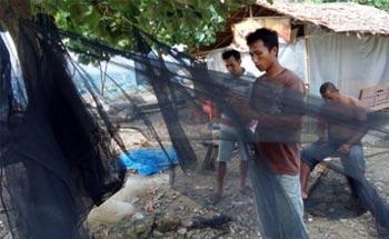 Nelayan Pangandaran Waspadai Musim Ikan Teri