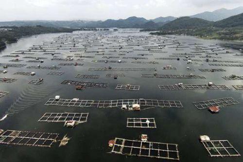 Norwegia Bantu Indonesia Transfer Teknologi Offshore di Pangandaran
