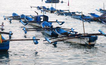 Ekosistem Pantai Pangandaran Rusak, Paceklik Ikan Berkepanjangan