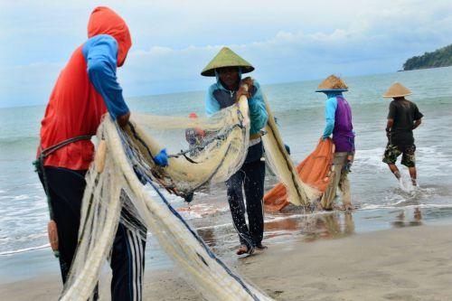 Pemerintahan Jokowi-JK Bangun Pabrik Ikan di Pangandaran
