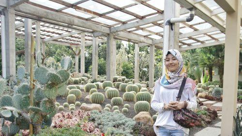 Satu-Satunya di Pangandaran, Taman Kaktus Ini Jadi Tempat Selfie