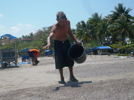 Sawah Kering Peternak Bebek Pangandaran Cari Pakan Di Pantai