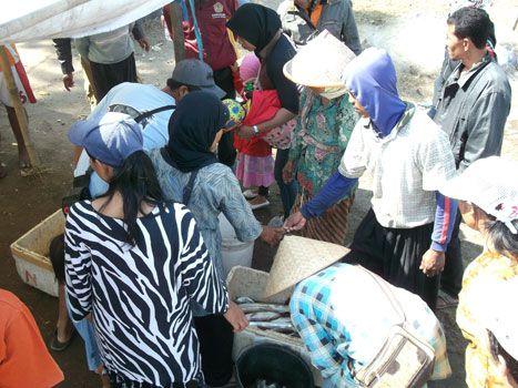 Tangkapan Ikan Nelayan Pangandaran Meningkat,Pendapatan Bakul Berlipat-Lipat.