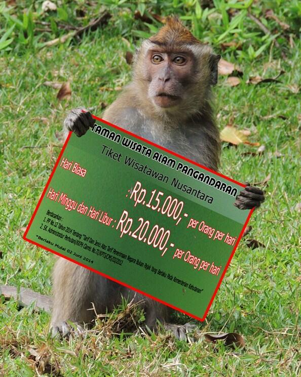 Tiket Taman Wisata Alam Cagar Alam Naik Hingga 80%