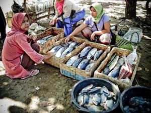 Nelayan Pangandaran